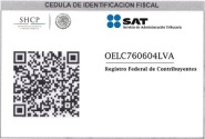 SAT0lea-PEQUE-B